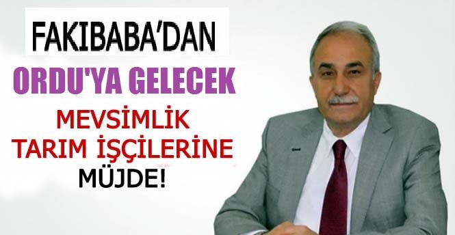 Bakan Fakıbaba'dan Mevsimlik İşçi Açıklaması