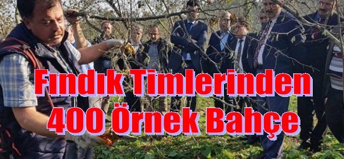 FINDIK TİMLERİ İŞ BAŞINDA