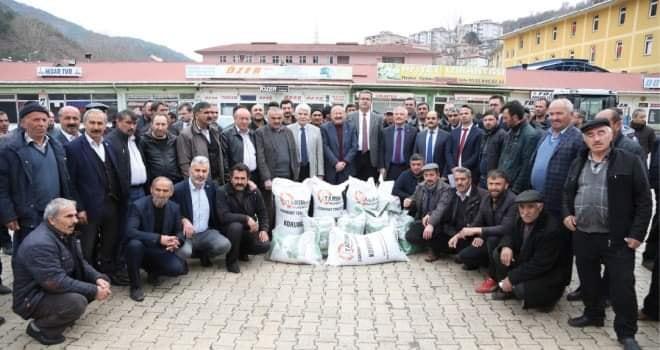 Büyükşehir'den Mesudiye ve Akkuş'lu hayvan üreticilerine destek