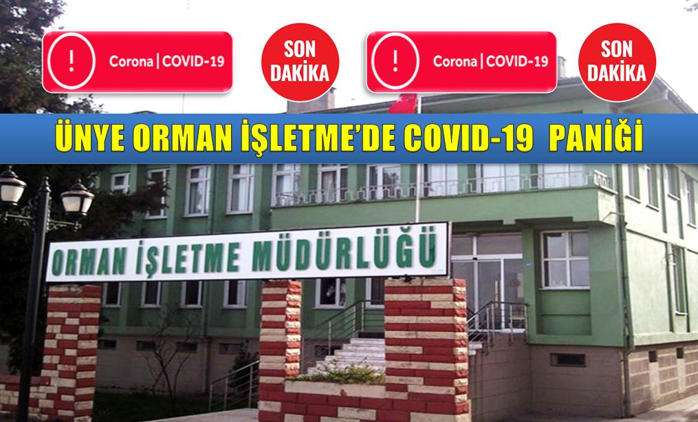 ÜNYE ORMAN İŞLETME'DE KORONAVİRÜS PANİĞİ