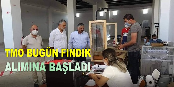 TMO İLK GÜN 3 TON FINDIK ALDI