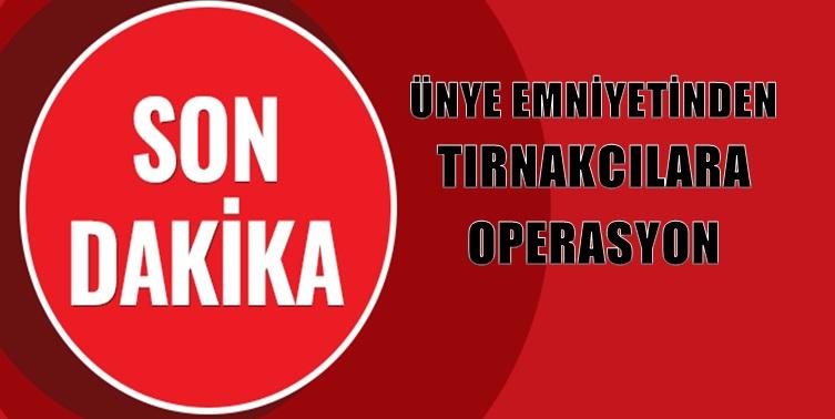 ÜNYE EMNİYETİNDEN TIRNAKCILARA OPERASYON