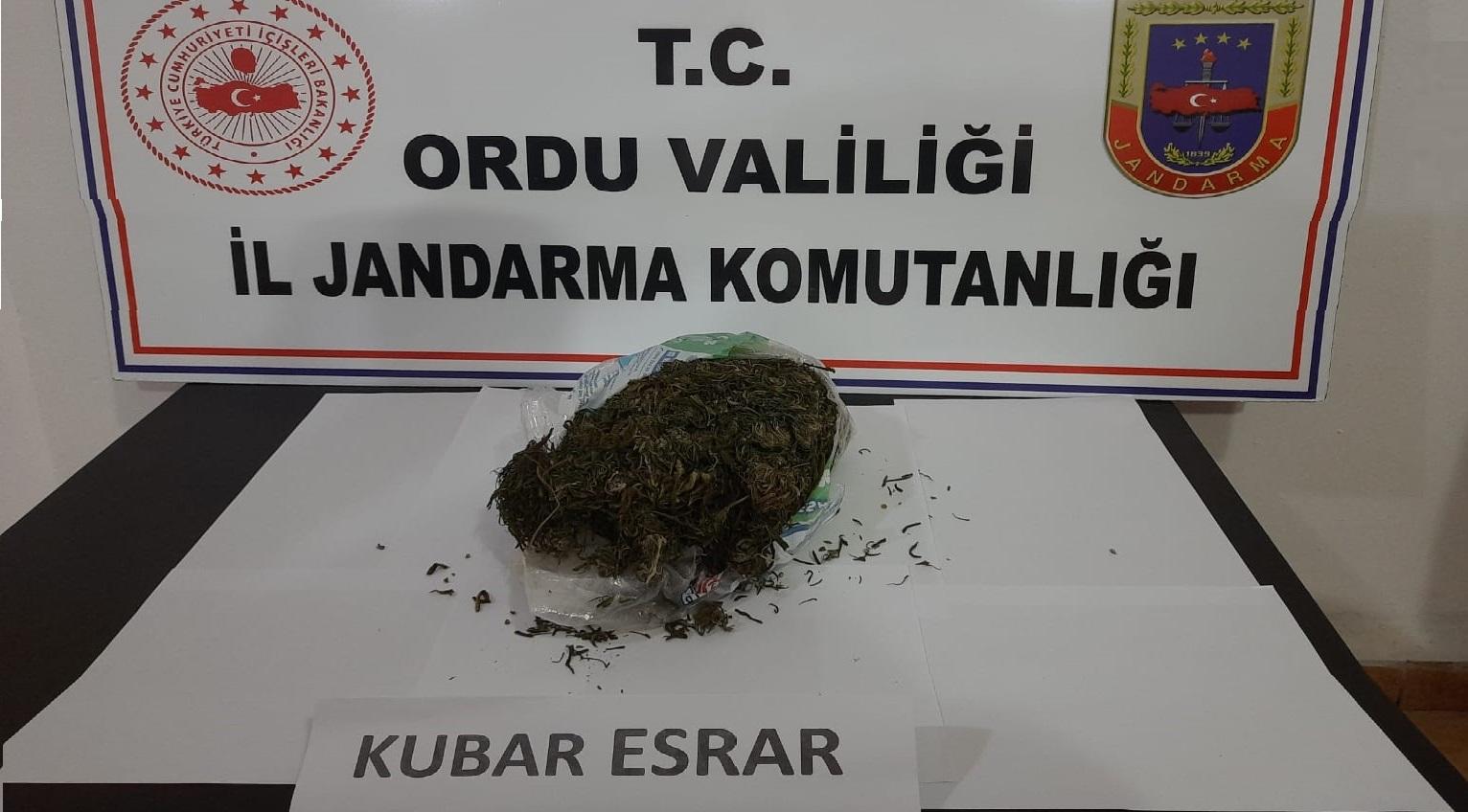 Fatsa ve Perşembe'de Uyuşturucu Operasyonu