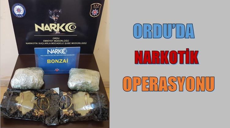 ORDU'DA NARKOTİK OPERASYONU