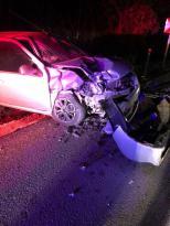 Domuz kazaya sebep oldu: 2 yaralı