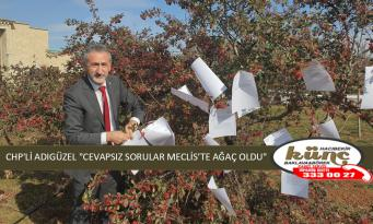 "CHP'Lİ ADIGÜZEL ""CEVAPSIZ SORULAR MECLİS'TE AĞAÇ OLDU"""
