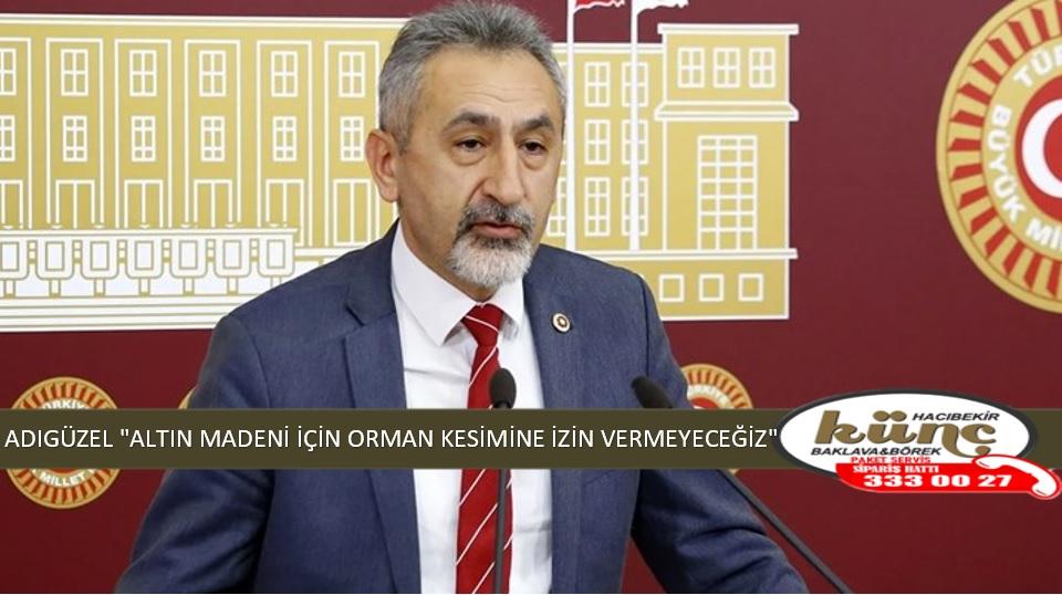 """ADIGÜZEL """"ALTIN MADENİ İÇİN ORMAN KESİMİNE İZİN VERMEYECEĞİZ"""""""