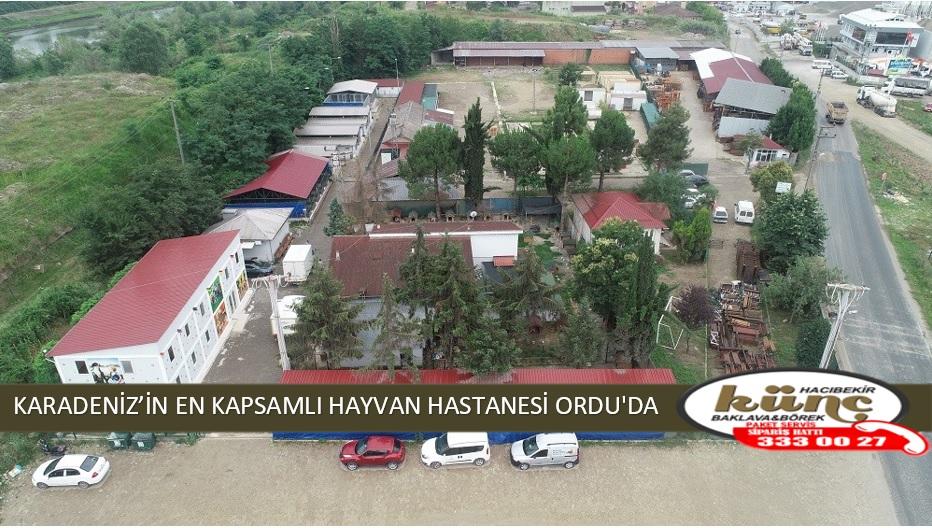 KARADENİZ'İN EN KAPSAMLI HAYVAN HASTANESİ ORDU'DA