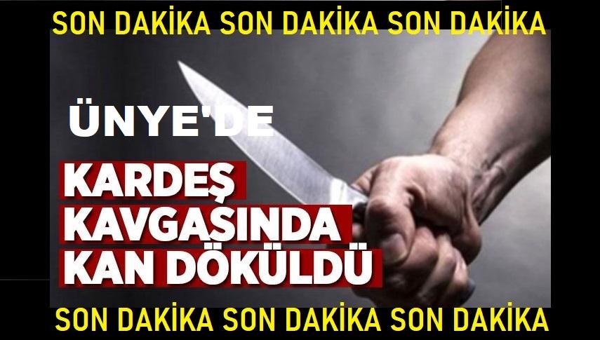 ÜNYE'DE KARDEŞ KAVGASINDA KAN DÖKÜLDÜ